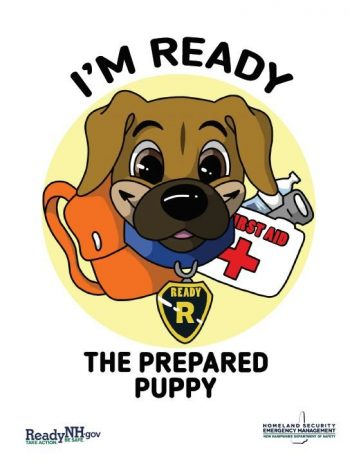 Ready Preparedness Activity Book
